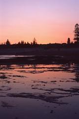 Reflections [Nikon F5 Film] (Aviator195) Tags: film filmphotography fuji fujichrome fujifilm provia provia100f fujiprovia nikon nikonf5 f5 epson epsonperfection epsonv550 filmisnotdead nikonfilm australia istillshootfilm mona vale monavale monavalebeach beach northern beaches sydney northernbeaches pittwater water reflection sunset dusk evening spring waterscape beachscape seascape