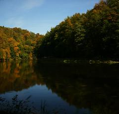Fluss Zschopau mit Fischen (lebastian) Tags: panasonic dmcfz1000 longexposure langzeitbelichtung polfilter nd filter herbst