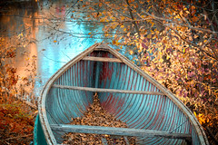 Autumn in Canada (A Great Capture) Tags: foliage leaves water ontario canoe autumn fall agreatcapture agc wwwagreatcapturecom adjm ash2276 ashleylduffus ald mobilejay jamesmitchell toronto on canada canadian photographer northamerica torontoexplore automne herbst boat reflections