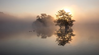 A Misty Morning