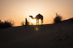 Rajasthan - Jaisalmer - Desert Safari with Camels-55