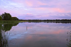 summer moods (JoannaRB2009) Tags: miliczponds stawymilickie dolinabaryczy riverbaryczvalley lowersilesia dolnyśląsk sunset pond water reflections nature summer mood landscape view colours clouds calm peaceful polska poland