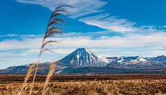 Tongariro's best face (amcatena) Tags: field volcano blue clouds new zealand white snow sly tongariro landscape