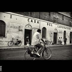 #BIKE2CASA #Senigallia DSCF4477 Viabici (Viabici(c) di StefanoM) Tags: viabici bike2 bicicletta bici bike bicycle cykel fahrrad street city mono bw streetphotography chiaroscuro blackandwhite italia senigallia