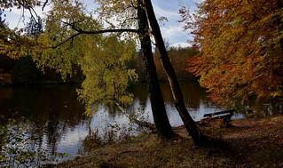 Germany, Herbst rund um den Bärensee bei Stuttgart, 75636/9111