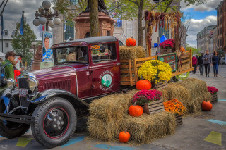 Pumpkins of Quebec