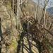 2017-10-27 11-01 Südtirol 203 Schnalstal, Tscharser Waalweg
