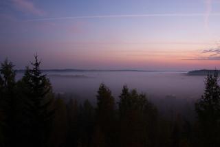 Torronsuo National Park (morning fog before sunrise)