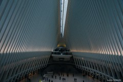 NYC cityscapes - The Oculus #nyc #ny #newyork #usa #architecture #architecturelovers #arquitetura #cityscape #nyarchitecture #nikon #d750 #buildings #nyclandscape #nycarchitecture #oculus #oculusnyc (lrsilvar) Tags: nyc ny newyork usa architecture architecturelovers arquitetura cityscape nyarchitecture nikon d750 buildings nyclandscape nycarchitecture oculus oculusnyc