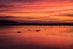 Red sky in the morning. (@bill_11) Tags: isleofthanet naturereserve sunrise pegwellbay places themes kent weather england cliffsend unitedkingdom gb