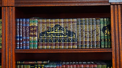 Library Books (Little Boffin (PeterEdin)) Tags: sony a6000 alpha alpha6000 sonyalpha sonyalpha6000 sonyalphaa6000 sonya6000 ilce6000 sonyilce6000 religiousbuilding worship placesofworship mosque muslim edinburghmosque edinburghcentralmosque potterrow kingfahdmosque kingfahdmosqueandislamiccentreofedinburgh religion faith god belief prayer islam allah quran koran islamicfaith arabic discoverislam discoverislamfestival edinburghfestival library book books publication publishing reading paper pages text words printing readingroom