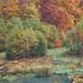 Herbsttümpel