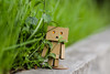 And, baby, just please don't go without me. I'm tired of doing it on my own. And now I'm stuck here thinking what it could be...... (shadman ali) Tags: danbo danboard danboardmini danbolove green greengrass dof bokeh macro yongnuo yongnuo85mm18 85mm shadman shadmanphotography shadmanfotografia shadmanali canon eos 700d t5i canon700d canont5i dhaka bangladesh