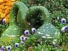 Autumn Love (Cher12861 (Cheryl Kelly on ipernity)) Tags: gourds entwined hugs kisses autumn fall whimsical flowers pansiesandmums chicagobotanicgarden glencoeillinois harvestdisplay
