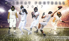 Wildcat Football (Jenny Onsager) Tags: sports team poster lights football baseball playoffs glitter turf stadium backlit highschool athletics sportsposter