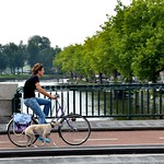 Biking The Dog - Amsterdam thumbnail