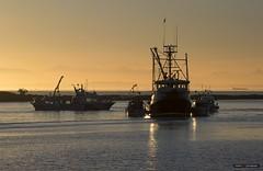 Big Brother (Clayton Perry Photoworks) Tags: vancouver bc canada richmond steveston autumn fall explorebc explorecanada fishing boat sunset fraserriver