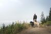 Kodak moment on West Tiger #1 (johnwporter) Tags: hiking scramble climbing cascades mountains stateforest issaquahalps tigermountain 徒步 爬行 攀登 喀斯喀特山脈 山 州立森林 伊薩闊阿爾卑斯 虎山 labrador blacklab yellowlab 拉布拉多 黑拉不拉多 黃拉不拉多