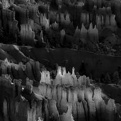 In Canyons 133 (noahbw) Tags: brycecanyon d5000 nikon utah abstract autumn blackwhite blackandwhite bw canyon desert erosion hills hoodoos landscape light monochrome natural noahbw rock shadow square stone incanyons