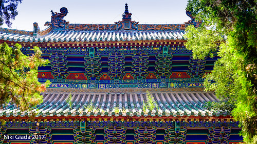 Shaolin Temple - Blue Roof