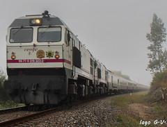 Al Andalus neblino (Iago González Vázquez) Tags: sergude serie 319 319319 319323 renfe al andalus boqueixon santiagodecompostela sevilla ferrocarril