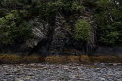 seward walls (Selzzi) Tags: alaskalumixfall seward shore
