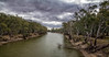 Murrumbidgee River at Hay (*ScottyO*) Tags: murrumbidgee river water nsw newsouthwales australia banks trees sky clouds gray leaves branches logs landscape outdoor nature green brown overcast exposureblending hdr hay