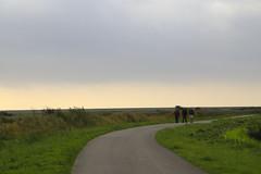 LT-1190 (Neve-Trek) Tags: névé trek randonnée zeelande zélande netherlands club