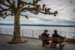 Auf der Walz (DerHarlekin) Tags: bodensee walz waltzing lake constance germany deutschland rothaus beer bier