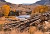 Yellowstone River near Gardiner, Montana (eikonologos.images) Tags: nikkor24120mmf4 nikondf foliage river gardiner montana fallcolours logs yellowstoneriver