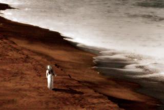 Cherishing Solitude