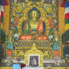buddha || Rewalsar (knowrahulj) Tags: buddha || rewalsar rahul jain rj knowrahulj iit iitmandi mandi rahuljain rahu instagram linkedin twitter entrepreneur