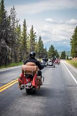 2 On the road (3).jpg