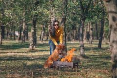 IMG_0250 (2) (andreyshkvarchuk) Tags: dog doguedebordeaux mastiff