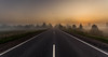 Find your own way... (A. Stavrovich) Tags: fog foggy mist road trees sunrise clouds highway morning hdr panorama scenery destiny dreamer way canon canon5dmarkii canonef1740mmf4l