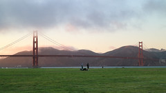 Lady and the Tramp (Gunn Shots (Mark Gunn)) Tags: golden gate bridge goldengatebridge crissyfield sanfrancisco sanfranciscomarina dogwalking romcom