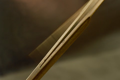 Dan Moi (bazazga) Tags: macromondays memberschoicemusicalinstruments