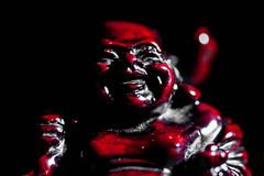 282:365 - Charm... (ASBO Allstar) Tags: asboallstar buddha ledlight macromondays project365 sidelit macro