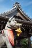 The Fox-O-Inari-San (Yorkey&Rin) Tags: 2017 9月 autumn bluesky em5markii foxstatue gifu inari japan lumixg20f17 rin september shrine town ub250042 お稲荷さん 荷席稲荷大明神 岐阜県 秋