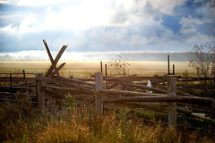 A Glorious Morning! (Anthony Mark Images) Tags: morninglight morning gloriusday sunny clouds fields fences barbedwire raindrops dew oldcedarfence rural countryside ontario canada farmland talbot hff peaceful lovely beautiful calm