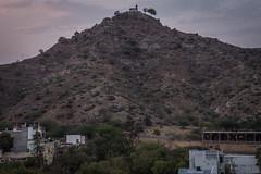 Rajasthan - Pushkar - City view-4
