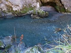 DSCF9128 (Corrado Riva) Tags: valtaleggio orrido frana natura acqua limpida