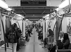Centipede (jeffcbowen) Tags: toronto ttc subway