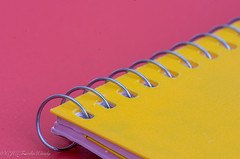 "DSC_5445-1  ~ ""MACRO MONDAYS"" ~ ""SPIRAL"" ~ ""10/23/17""  ~ (Travlin/Cindy1) Tags: macro macromondays spiral 102317 mondays notebook"