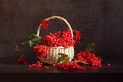 Red Is Good (panga_ua) Tags: viburnum red redberries autumn fall basket food greenleaves light 2017 october bunchofberries arrangement art artandcraftproduct composition horizontal indoors nopeople stilllife photography table colorimage dark fruit freshness ukraine variation wicker woodmaterial