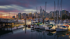 Harbour Lights (Andrew G Robertson) Tags: harbour seawall vancouver british columbia sunrise morning blue hour sunset skyline cityscape coal harbor