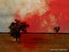 Deux (JEAN PAUL TALIMI) Tags: arbre talimi rouge statue silouettes piquets automne texture bourgogne zen campagne arbres vent calme ciels yonne appoigny deux monochrome nature