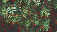 [h a z y]. (pictob) Tags: leaves plant foliage green red nature grid modern urban berlin wireframe digital edit graphicdesign