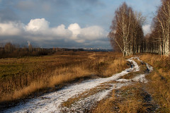 on the way to winter (Sergey S Ponomarev) Tags: sergeysponomarev canon eos 70d landscape landschaft paysage paesaggio fall autumn snow clouds path forest woods birch kirov vyatka 2017 october ottobre russia russie north europe сергейпономарев природа пейзаж осень утро дорога снег деревья березы вятка россия киров октябрь ef24105f40lisusm marumi city citta город urban nature natura autunno nuvole buildings houses perspective