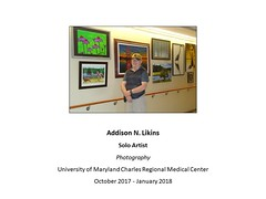 "Addison N. Likins, Artist • <a style=""font-size:0.8em;"" href=""https://www.flickr.com/photos/124378531@N04/37874329756/"" target=""_blank"">View on Flickr</a>"
